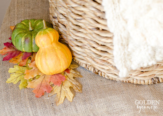 Fall Decor from The Golden Sycamore