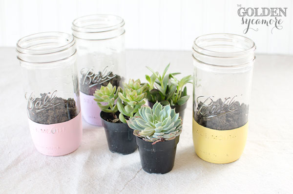 Painted Mason Jar Succulent Planter