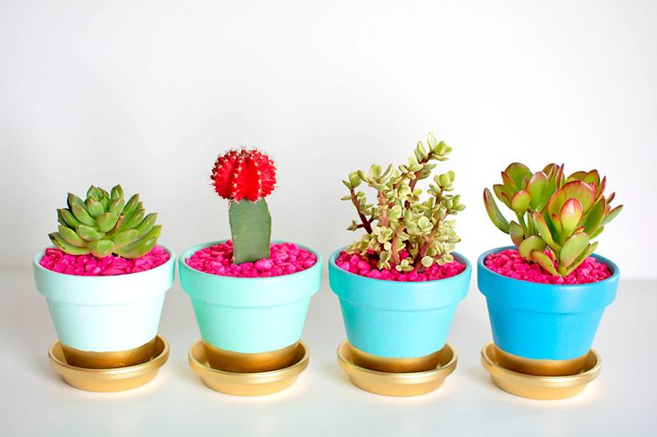 Decor, DIYs, and Treats to Whet your Appetite - gold dipped plant pots