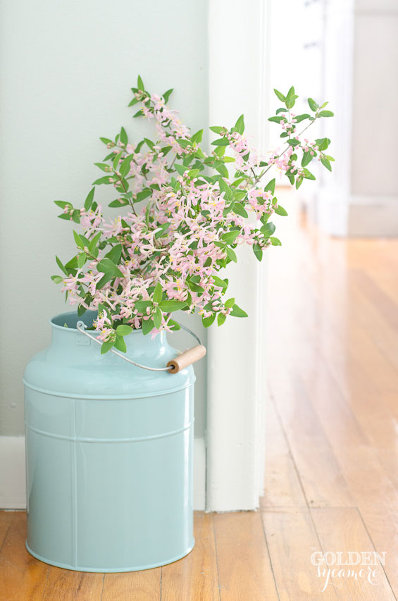 Pink flowers in aqua canister