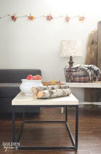 Fall basement living room