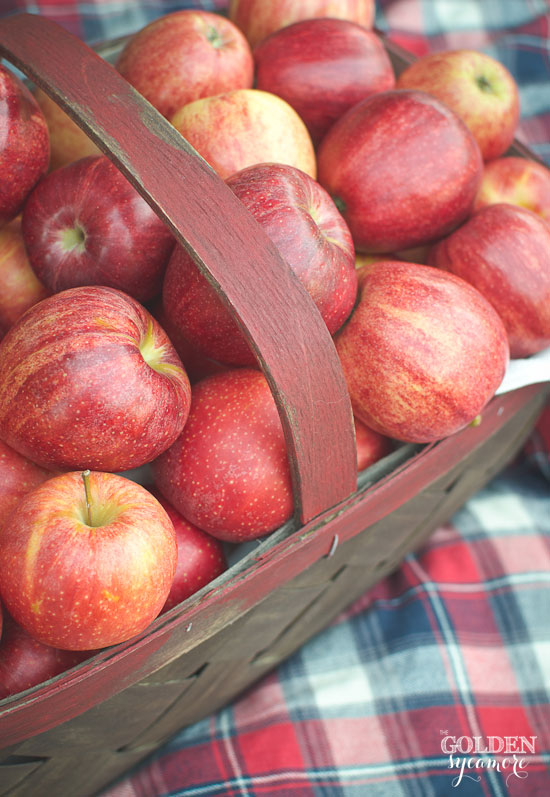 Red apples in DIY bushel basket | via www.thegoldensycamore.com
