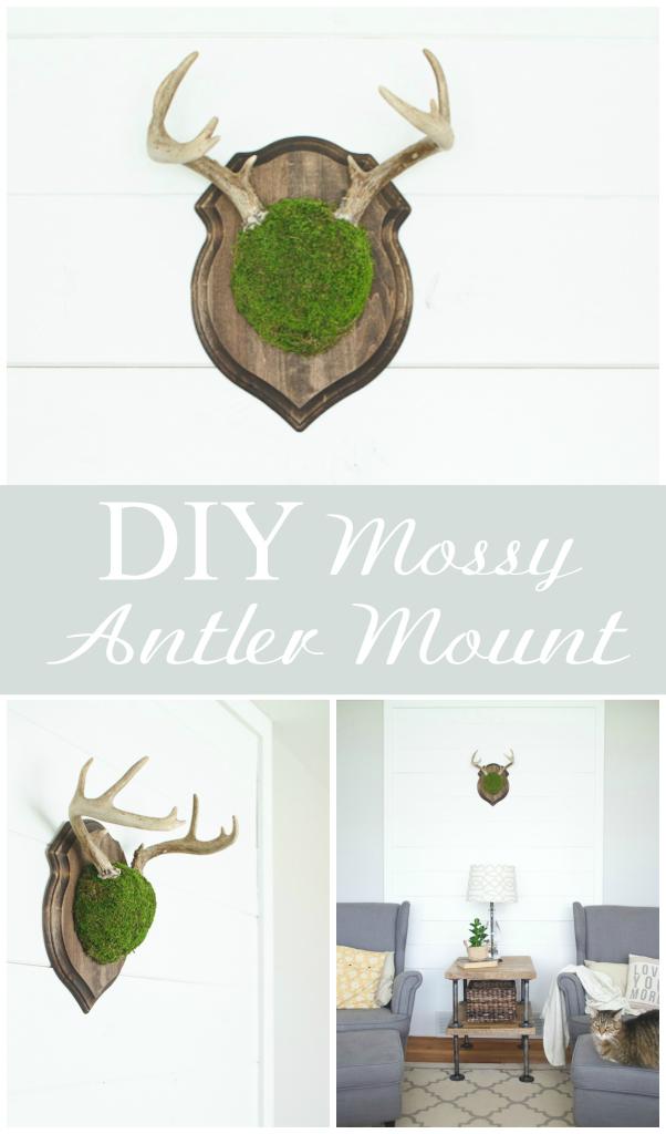 DIY Mossy Antler Mount via thegoldensycamore.com