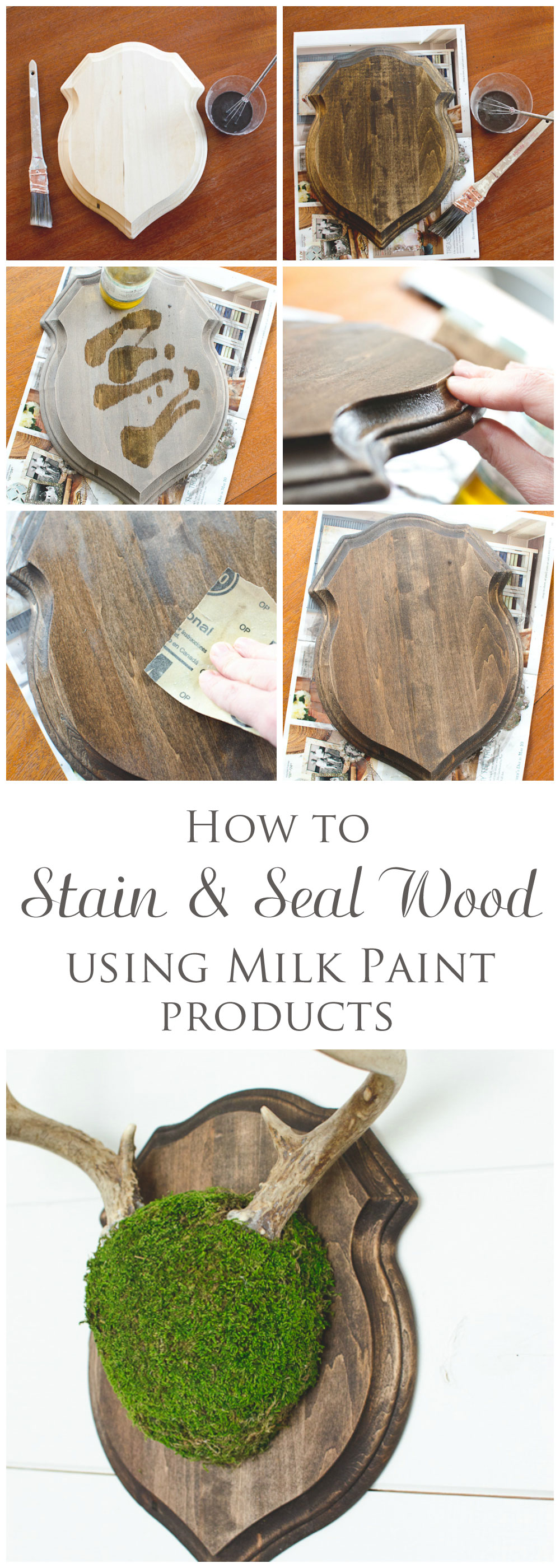 How to stain & seal wood using milk paint products - via thegoldensycamore.com
