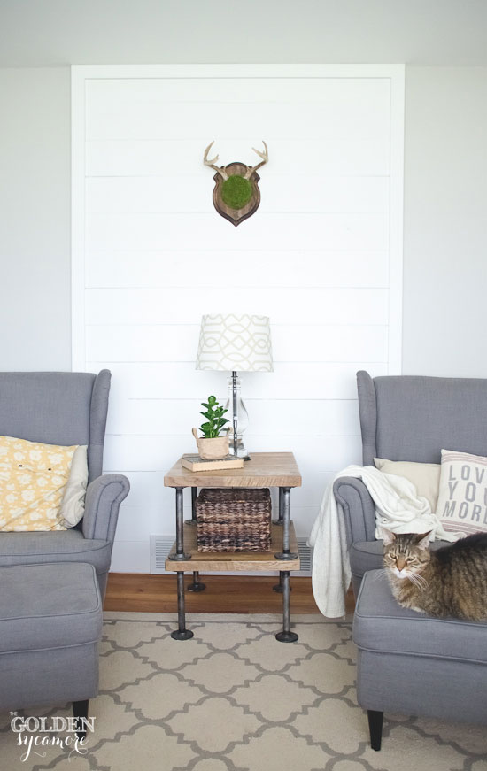 Mossy deer antler mount on DIY white shiplap accent wall via thegoldensycamore.com