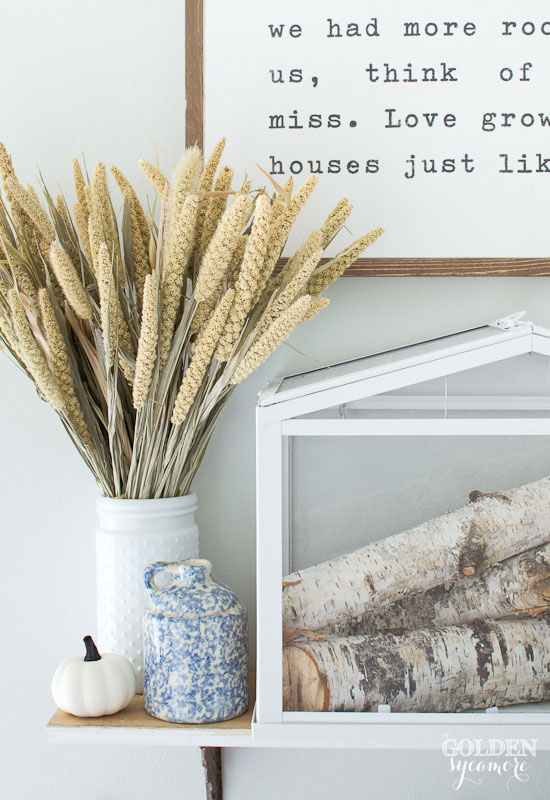 Neutral fall entry with birch branches
