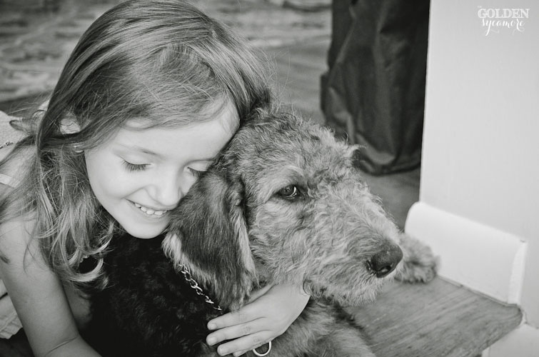 meeting Charlie Airedale puppy