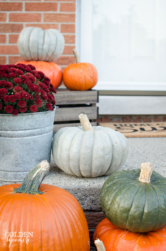 Fall pumpkins and burgundy mums on front porch